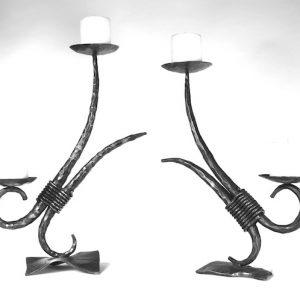 Double Horn