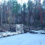 Bear Creek Gate - Black Mountain Iron