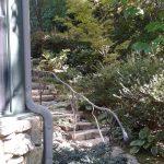 Garden Star Rig - Black Mountain Iron