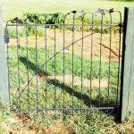 Gingko Garden Gate